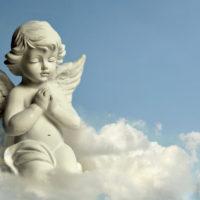 Quel est le rôle des chérubins(angelots) ?