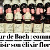 Fleur de Bach : comment choisir son élixir floral ?