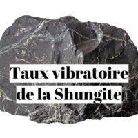 Taux vibratoire de la pierre shungite?